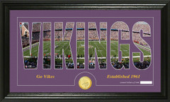 Minnesota Vikings Word Silhoutte Coin Photo Mint
