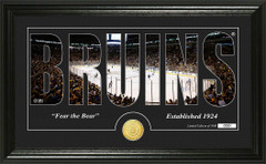 Boston Bruins Word Silhouette Coin Photo Mint