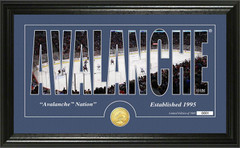 Colorado Avalanche Word Silhouette Coin Photo Mint