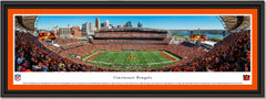 Cincinnati Bengals Paul Brown Stadium Framed Picture