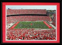 Ohio State Script Personalized Your Name on the Field Framed