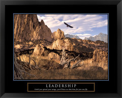 Leadership Framed Motivational Poster