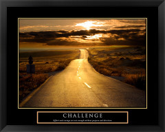 Challenge Motivational Framed Poster