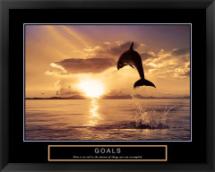 Goals Framed Motivational Poster