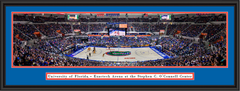 Florida Gators O'Connell Center Framed Panoramic Picture