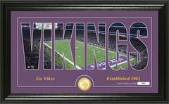 "Minnesota Vikings ""Silhouette"" Panoramic Bronze Coin Photo Mint"