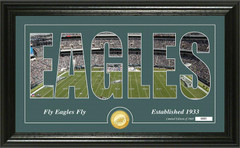 "Philadelphia Eagles ""Silhouette"" Panoramic Bronze Coin Photo Mint"