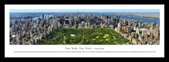 NYC Central Park Framed Picture