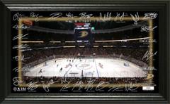 Anaheim Ducks 2018 Signature Rink