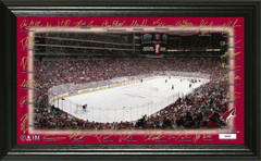 Arizona Coyotes 2018 Signature Rink