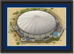 Tropicana Field Large Illustration - Home of the Tampa Bay Rays