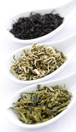 Your Global Source For Coffee & Tea