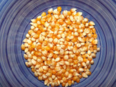 Monarch Butterfly Popcorn One lb