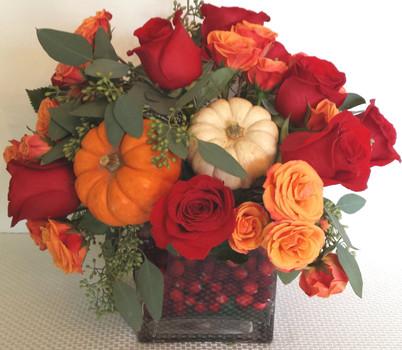 Thanksgiving Mini-Pumpkin Cubes - Online Flowers Highland Park IL - Jan Channon Flowers