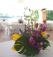 Chicago Botanic Gardens Engagement Party - Wedding Decorations Deerfield IL - Jan Channon Flowers