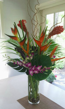 Exotic touches - Floral Delivery Northbrook IL - Jan Channon Flowers