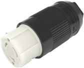 50A 125/250V CONNECTOR (F) 50A PLUG and CONNECTOR (FURRION)