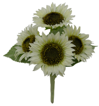 "11"" Sunflower Bush: Cream (4)"