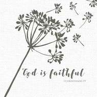"God Is Faithful - Luncheon Napkins with KJV Bible Verse - 6.5"" x 6.5"" (20/pkg)"