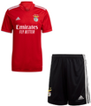 Kids Benfica 2021-22 Home Football Kit Soccer Kit With Free Name&Number