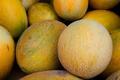 Ananas (Pineapple Melon) 1,000 Seeds