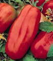 WHOLESALE SAN MARZANO TOMATO-1,000 SEEDS