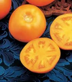 Tangerine Tomato Seeds-Organic