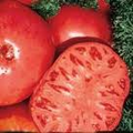Bulk Brandywine Tomato-500 Seeds-ON SALE1