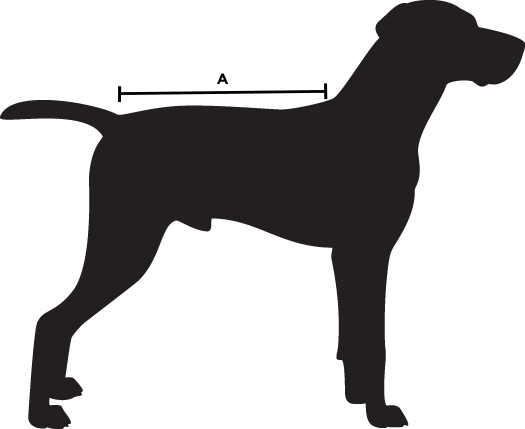 dog-size-guide-a.png