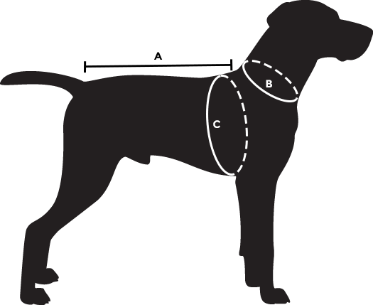 dog-size-guide-abc.png