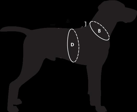 dog-size-guide-abd-plv.png