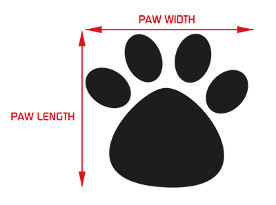 paw-guide.png