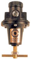 Coilhose Pneumatics Heavy Duty Regulators