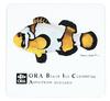 ORA Black Ice by Karen Talbot Mousepad - $8.95