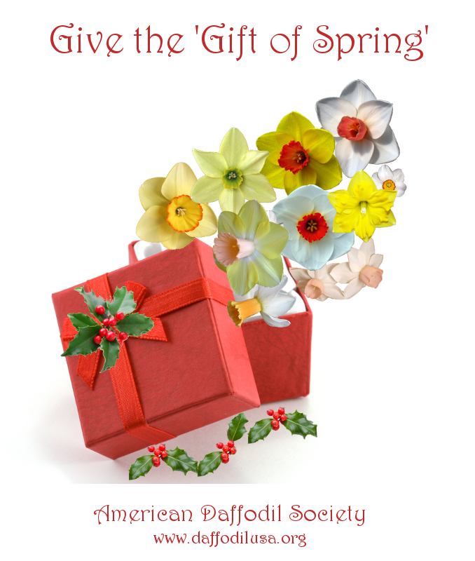 give-the-gift-of-spring.png