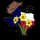 Convention Dallas 2020 Full Registration