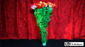 Classic Double Blooming Bouquet by Mr. Magic