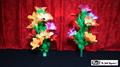 Double Flower Bouquet by Mr. Magic