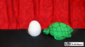 Egg to Turtle Sponge by Mr. Magic