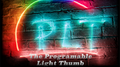 The Programable Light Thumb (Set of 2 with online instructions)