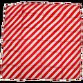 "24"" Red and White Zebra Silk"