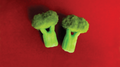 Sponge Broccolli (Set of two) by Alexander May