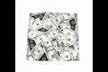 Money Theme Gag Bag with Zipper