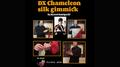 DX Chameleon Silk Gimmick by Ryusei Kamiguchi & Tejinaya Magic