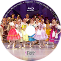 2014 Recital and Coppelia: NEAB Coppelia Sunday 5/18/2014 3:00 pm Blu-ray