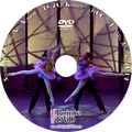 Southern Performing Arts Academy Recital 2014: Tuesday 6/3/2014 5:00 pm CAST C DVD