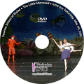 Sawnee School of Ballet 2015 Recital: Saturday 5/30/2015 11:00 am DVD