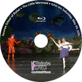 Sawnee School of Ballet 2015 Recital: Saturday 5/30/2015 11:00 am Blu-ray