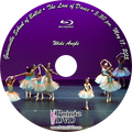 Gainesville School of Ballet 2015 Recital: 5:30 pm Sunday 5/17/2015 Wide Angle Only Blu-ray