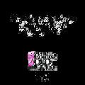 North Atlanta Dance Academy Summer 2015: Summer Intensive 7/31/2015 DVD